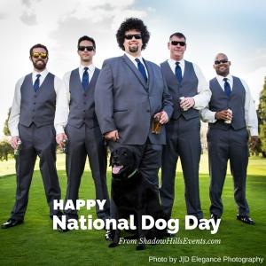 Happy National Dog Day